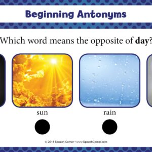 Spot On! Beginning Synonyms & Antonyms-4195