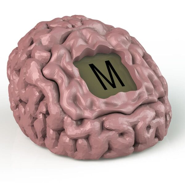 Brain Fart-5520