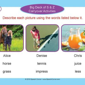 Speech Corner Photo Cards - Big Deck Of S & Z Carryover Activities-4936